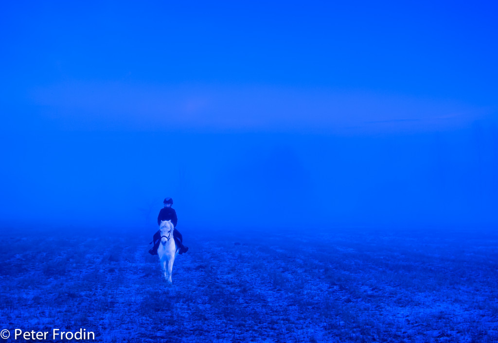 Ridtur i blå timmen på kaninlandet