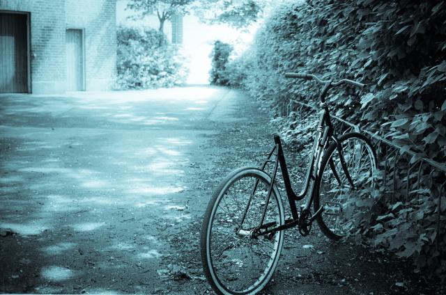 Slaktad cykel